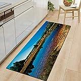OPLJ Alfombra para el hogar con Paisaje Natural, alfombras para Piso de Cocina, alfombras de Plantilla para Cocina, alfombras para baño Interior, Alfombrillas Antideslizantes A12, 50x160cm