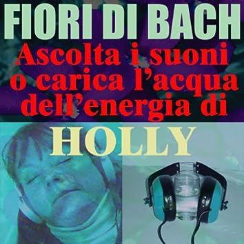 Holly - (Ascolta i suoni o carica l'acqua dell'energia di Holly)
