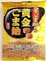 川口製菓 黄金ごま飴 100g×10袋