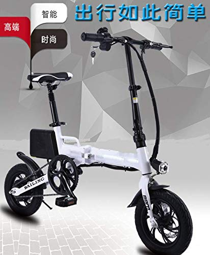 Shijing Elektrische fietshoes voor volwassenen, scooter, autoaccu, 36 V, lithium batterij