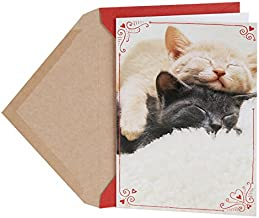 Hallmark Shoebox Funny Valentine's Day Card for Significant Other (Sleeping Kittens)