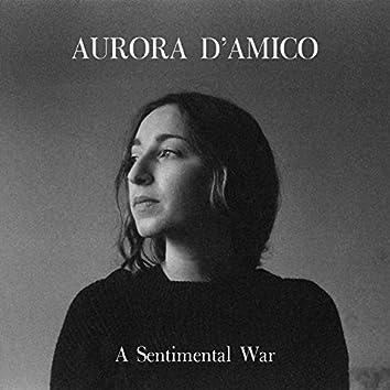 A Sentimental War