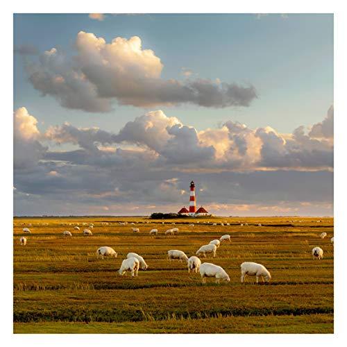 Vliestapete Nordsee Leuchtturm mit Schafsherde, HxB: 240cm x 240cm