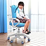 Children's Learning Chair Kids Study Chairs Student Home Desk Chair Mesh Lift Chair Multi-Function Ergonomic Sitting Posture Correction Computer Chair Suitable for 3-18 Years Old (Blue)