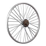 Taylor-Wheels 26 Pouces Roue arrière vélo YAK19 Roue Libre à Visser 6 Argent