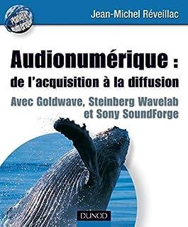 Audionumérique : de l'acquisition à la diffusion : Avec Goldware, Steinberg wavelab et Sony Soundforge (Planète numérique)