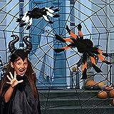 EKKONG Telaraña Halloween,Red de araña para Halloween, Telaraña de Halloween, para la decoración de Halloween, decoración, Halloween, Fiesta temática, Carnaval (Talla 2)