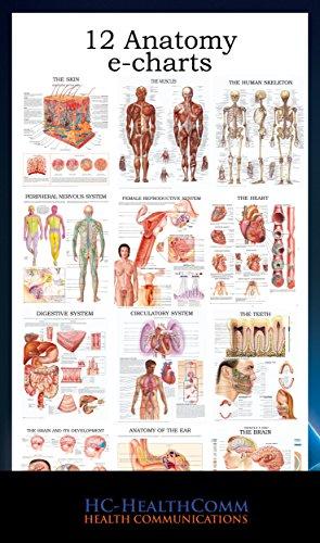 12 Anatomy e-charts: Full ilustrated 2016 (English Edition)