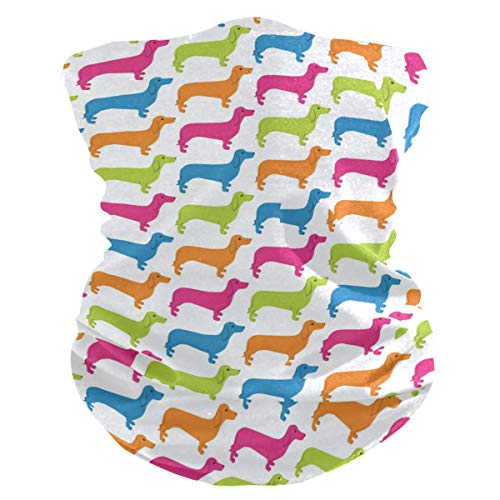 Gekleurde haarband voor honden en dieren, zonnebescherming, UV-bescherming, gezichtsmasker met magische halsdoek.