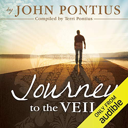 Journey to the Veil audiobook cover art