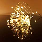 LED Fairy String Lights, 12-Pack 20 Micro Lights On Silver Copper Wire ( Batteries Include) for DIY Wedding Centerpiece, Mason Jar Craft, Christmas Tree, Garlands, Party Decoration (Warm White)