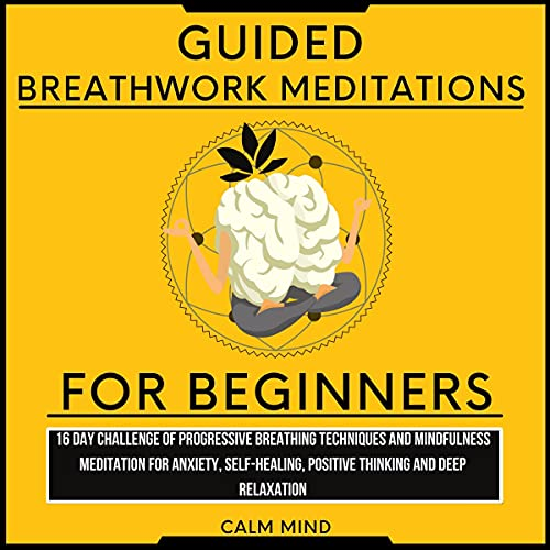Listen Guided Breathwork Meditations for Beginners: 16 Day Challenge of Progressive Breathing Techniques an audio book