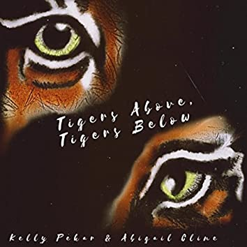 Tigers Above, Tigers Below (feat. David McCarthy)