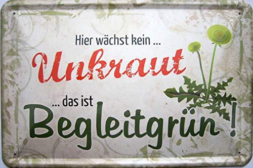 vielesguenstig-2013 Blechschild 20x30cm - Hier wächst kein Unkraut das ist begleitgrün Garten Kleingarten Gärtner Vintage