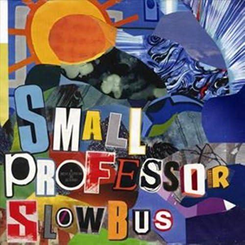 Small Professor