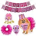 SOSPIRO Dog Birthday BandanaHatTutu Skirt BannerSet for Pet Puppy Girl DogBirthday Party Supplies Decorations (Pink)