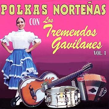 Polkas Nortenas, Vol. 1