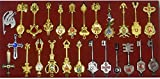 Cosplay Fairy Tail Keys Set of 25 Golden Zodiac Keys and Keyring£¬ Blade Lucy Natsu Dragneel Heart Keychain Pendant (Red Logo)