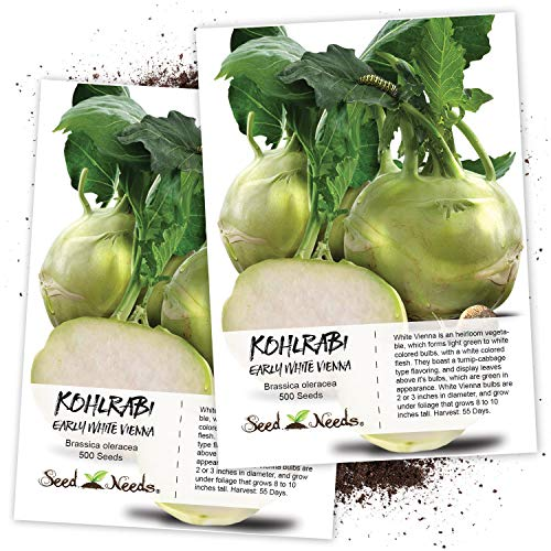 Seed Needs, Early White Vienna Kohlrabi (Brassica...
