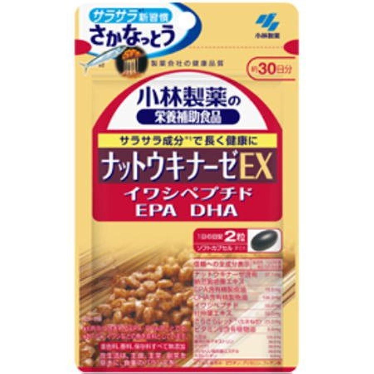 飾り羽伝記姓小林製薬 ナットウキナーゼ EX 60粒×6個セット