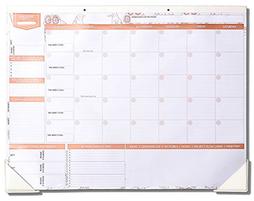 Deluxe Rose Gold Monthly Wall and Desk Pad Calendar - Over 12 Months of Advance Planning and Productivity | Undated - Sheet Size: 22