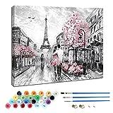 Kit de pintura al óleo por números para niños y adultos principiantes, incluye pinceles y pigmentos acrílicos, decoración de hogar-París amor recuerdos 30 × 40 cm