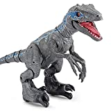 HGFDSA Remote Control Dinosaur Toys for Kids, Velociraptor Blue Jurassics World, Prehistoric Dinosaurs Educational Toys,Robot Dinosaur for Girls/Boys 3-12 Age, Walking with Dinosaurs