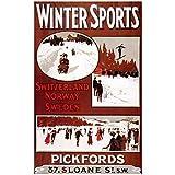 Shmjql Vintage Ski Sport Reisen Poster Taverne Lake Tahoe