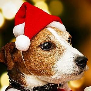 L-DiscountStore 1pièce pour Animal Domestique Bonnet de Noël Chien Mignon de Noël Père Noël Rouge Costume de Vacances Petit Chapeau