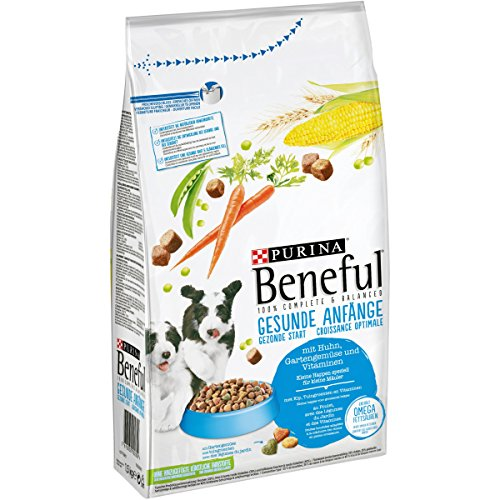 PURINA BENEFUL Gesunde Anfänge Welpenfutter trocken, mit Huhn und Gartengemüse, 6er Pack (6 x 1,5kg)