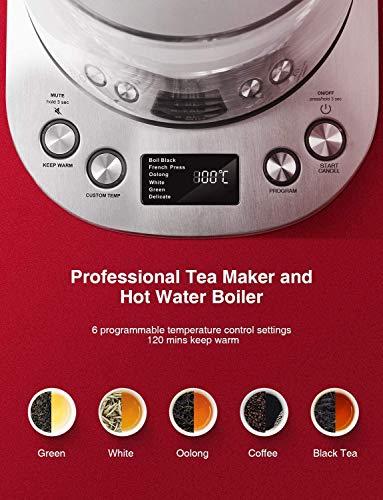 Wasserkocher-DECEN-Wasserkocher-Glas-Temperatureinstellung-40-100-Grad-17-Liter-2200-Watt-Warmhaltefunktion-Teekocher-mit-Temperaturanzeige-100-BPA-FREI