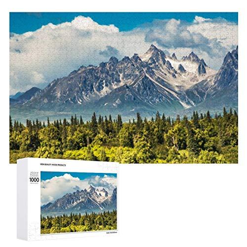 Promini Rompecabezas de madera Denali National Park Alaska Mount McKinley blanco-color15 1000 PCS Desafiante Puzzle Juego Divertido Juguetes Familiares Juegos Educativos