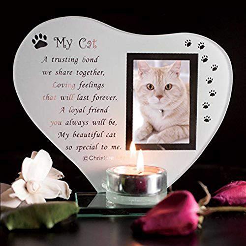 Budgetline Special Cat Keepsake Grave Memorial Glass Ornament Cat Plaque Poem Candle Photo holder