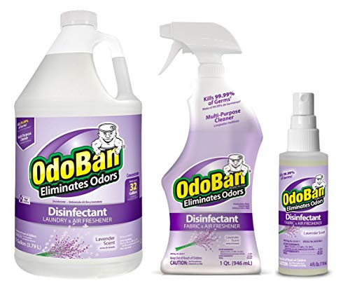 OdoBan Multipurpose Cleaner, 1 Gallon Concentrate, 32oz Ready-to-Use and 4oz Travel Spray, Lavender Scent, Odor Eliminator, Disinfectant, Flood Fire Water Damage Restoration
