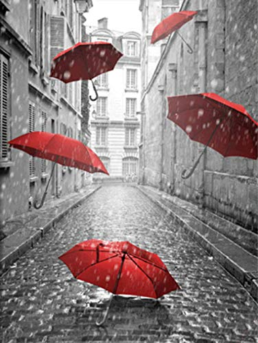 N/R 1000 pieces of puzzles-scenery puzzles-black and white red-umbrella puzzles-rain-3D puzzles-DIY puzzles-puzzle games-wooden-children's adult puzzles-home decoration