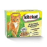 kitekat gatto offerte