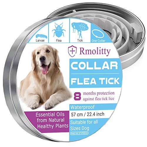 Rmolitty Collar Antiparasitario Perros, Impermeable