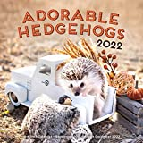 Adorable Hedgehogs 2022: 16-Month Calendar - September 2021 through December 2022