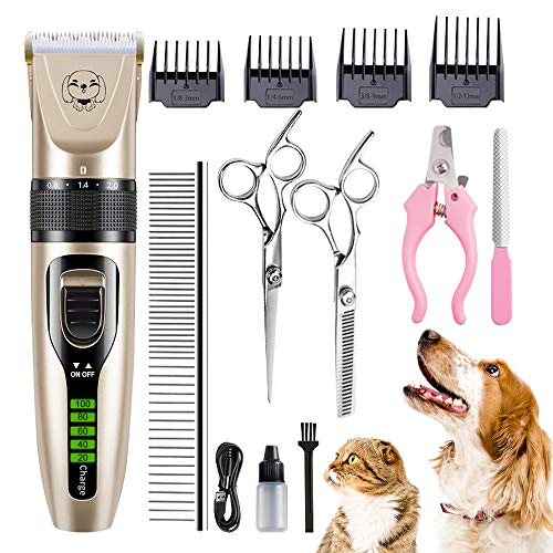 Best Animal Clippers for Long Hair Cats