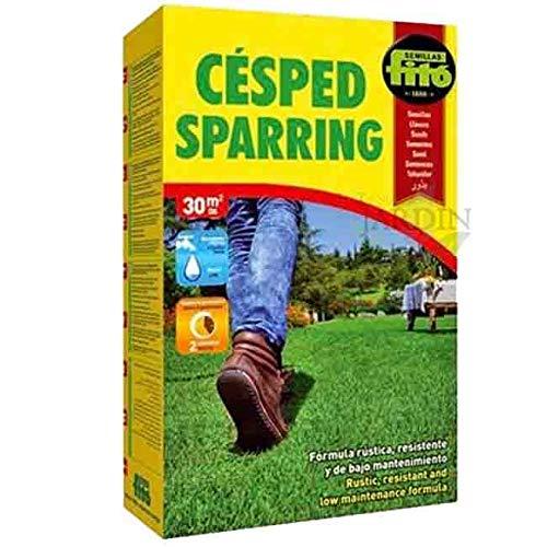 SEMILLAS CESPED Sparring compacto resistente 1 Kg. Césped de amplico espectro, fuerte,...