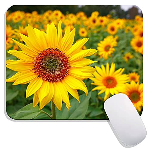 Pretty Sunflowers Mousepads,Yellow Flowers Mouse Mat, Plant Floral Square Waterproof Mousepad, Non-Slip Rubber Base Mouse Pads for Office Home Laptop, 9.5'x7.9'x0.12' Inch