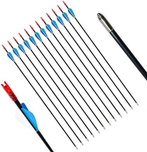 29 Pulgadas Flechas de Fibra de Vidrio para práctica de Tiro con Arco o Flechas para jóvenes para Arco recurvo (12 Piezas)