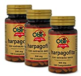 Harpagofito 500 mg. (ext. seco) 100 comprimidos (Pack 3 unid.)