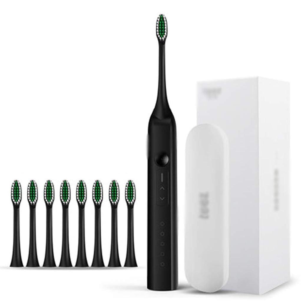 気分テラス生産性IPX8電動歯ブラシ、電動歯ブラシ付き、USB充電式3時間急速充電30日使用、2分スマートタイマー防水,C