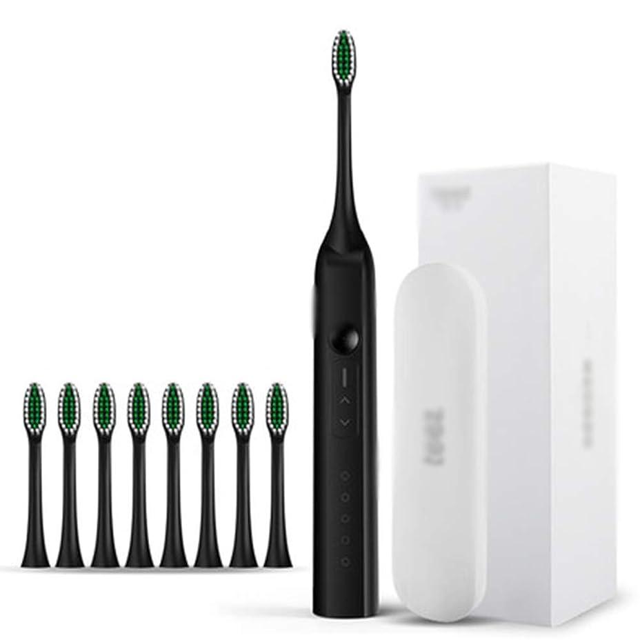 ベルベットせがむ削除するIPX8電動歯ブラシ、電動歯ブラシ付き、USB充電式3時間急速充電30日使用、2分スマートタイマー防水,C