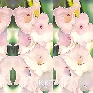 Big Sale!Flwer Seeds Pink Gladiolus Flower Bulbs Seeds Sword Orchid Bonsai Plants For Home & Garden 100 Seed/pack