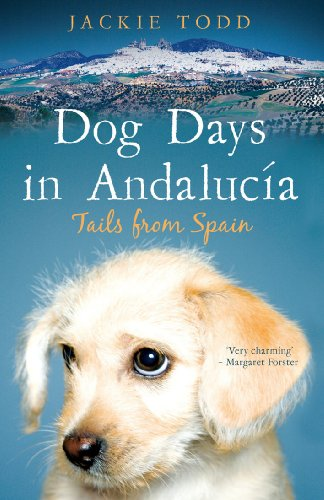 Dog Days in Andalucía: Tails from Spain (English Edition)