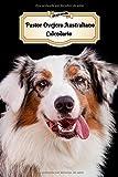 2020 Pastor Ovejero Australiano Calendario: 107 Páginas   Tamaño A5   Planificador Semanal   12 Meses   1 Semana en 2 Páginas   Agenda Semana Vista   Tapa Blanda   Perro