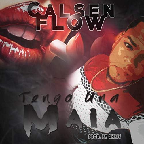 Calsenflow