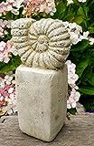 Vintage Gartendeko Muschel Schnecke, Ammonit, Figur, Garten, Deko, Dekoelement, Innen und Außen, Terrakotta, Gartenfigur